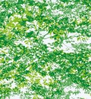 Phim dán kính GF141